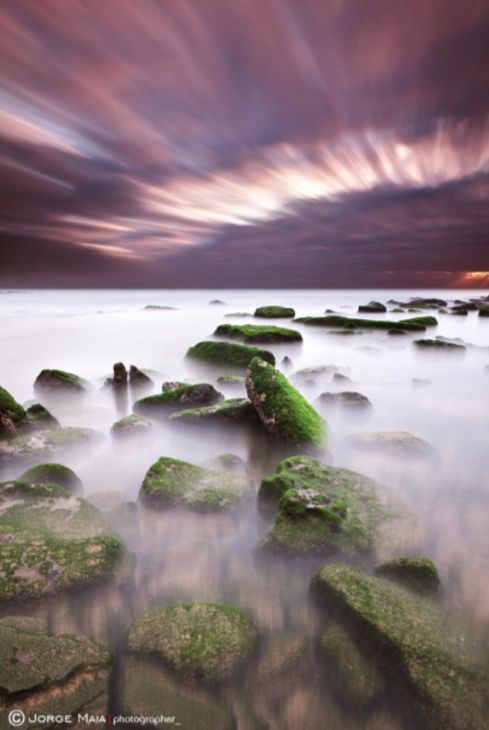 Green motion by Jorge Maia