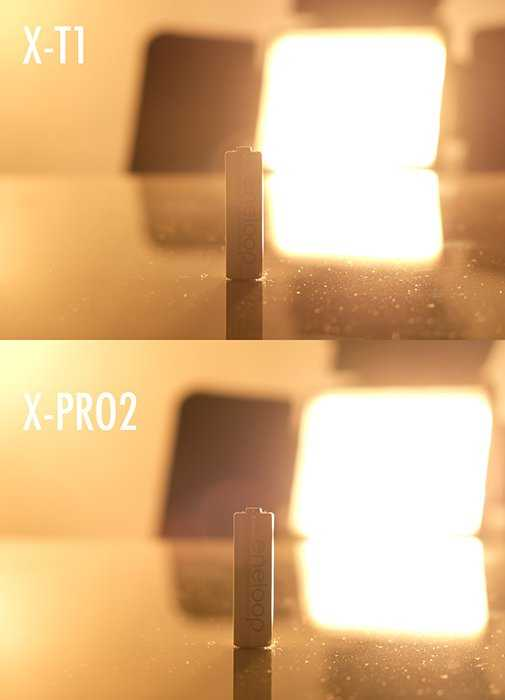 xtxpro-focusing-backlit-3