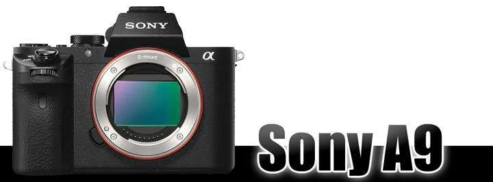 Sony-A9-series-coming