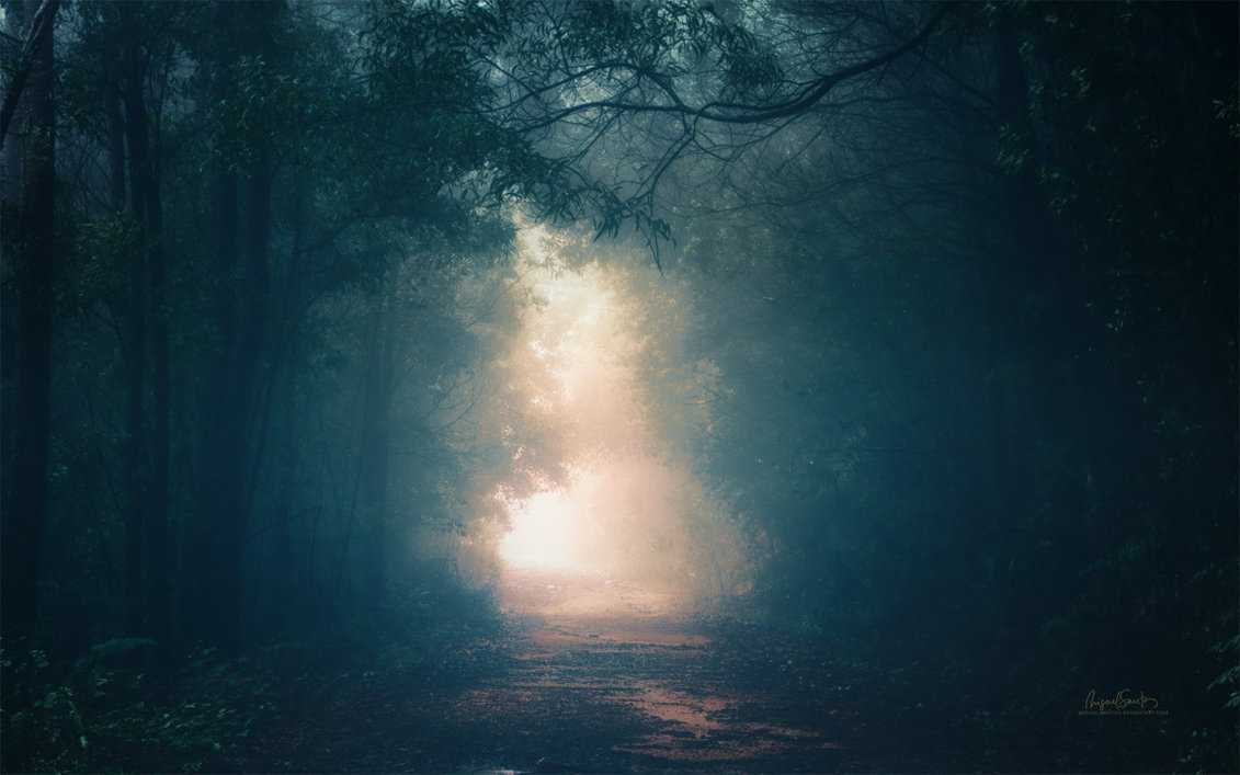 into_the_light__stock___wallpaper_by_miguel_santos-d821jj8