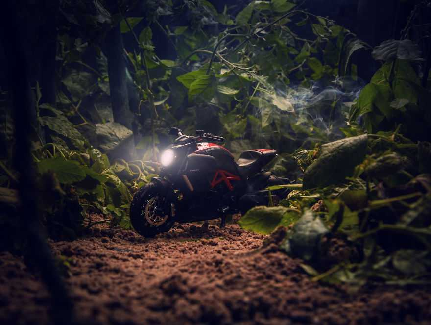 the-jungle-i-made-for-my-bike-585c0ece194a1__880