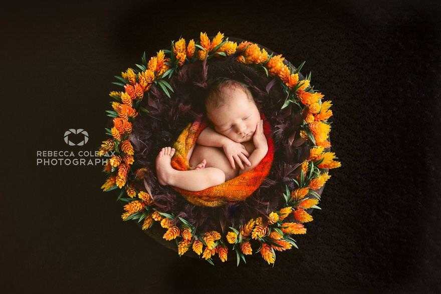 Photographer-takes-pictures-of-babies-as-never-seen-before-5922b2b4daf16__880
