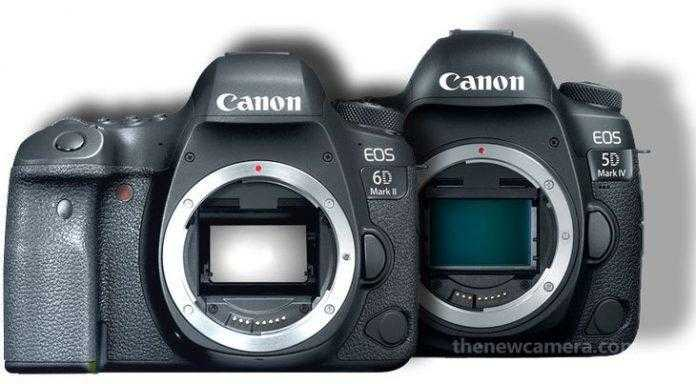 Canon-6D-Mark-II-vs-5D-Mark-696x384.jpg