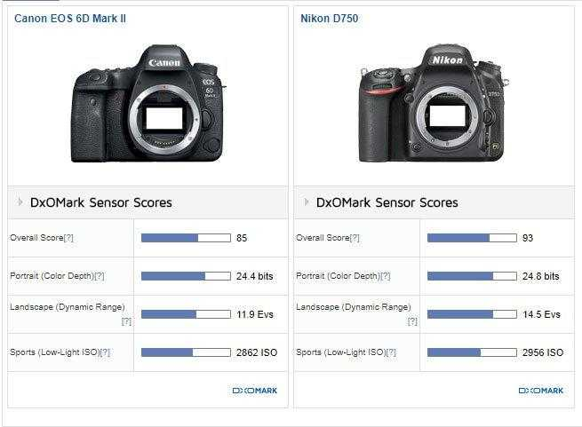 Canon-6D-Mark-II-vs-Nikon-D