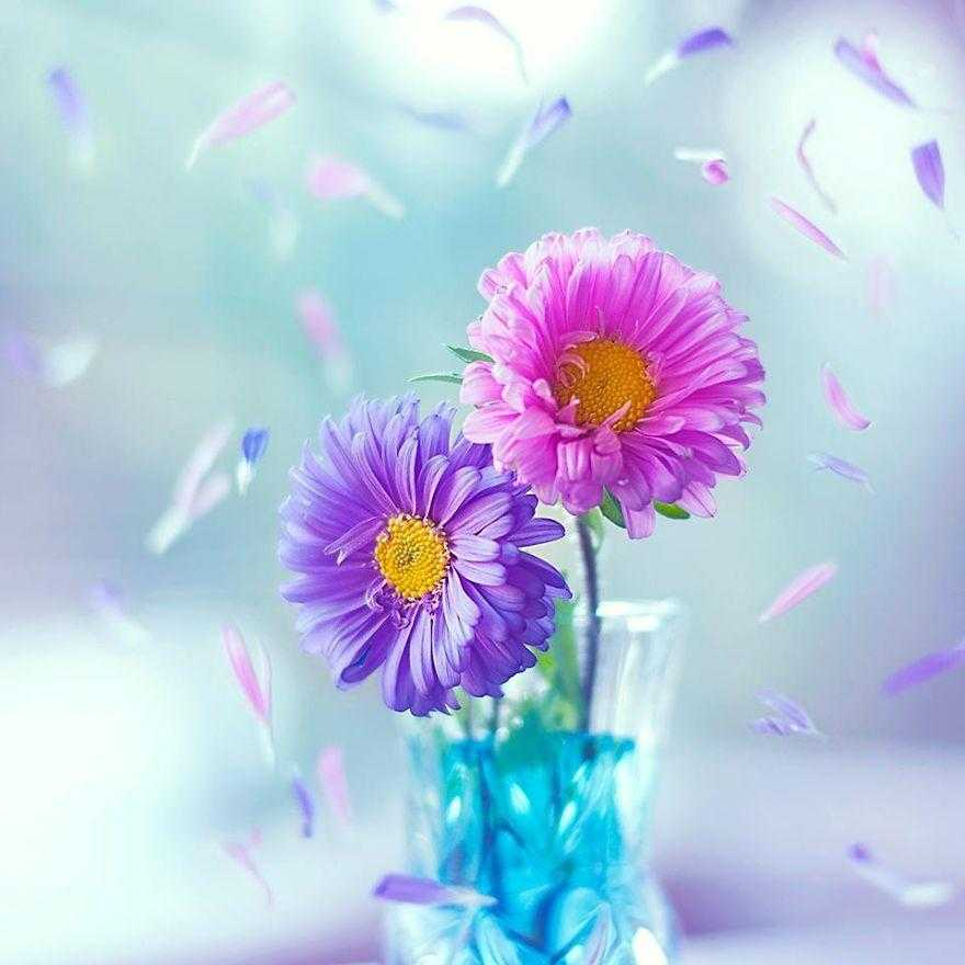 I-use-flowers-to-create-magical-images-597838b447eea__880