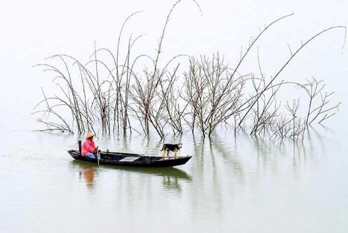 Ly Hoang Long и его атмосферная и живая фотография